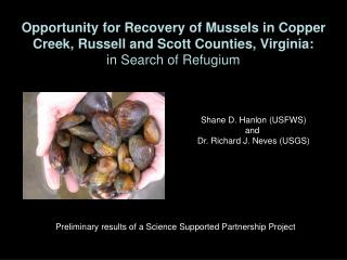 Opportunity for Recovery of Mussels in Copper Creek, Russell and Scott Counties, Virginia: