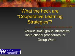 "What the heck are ""Cooperative Learning Strategies""?"
