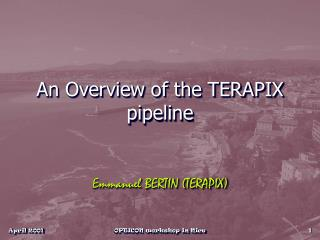 An Overview of the TERAPIX pipeline
