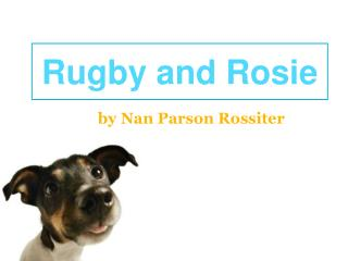 Rugby and Rosie