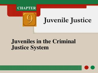Juveniles in the Criminal Justice System