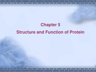 Chapter 5     Structure and Function of Protein