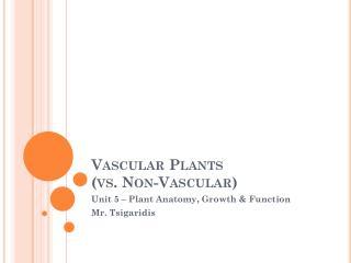 Vascular Plants (vs. Non-Vascular)