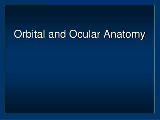 Orbital and Ocular Anatomy
