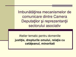 Atelier tematic pentru domeniile  justiţie, drepturile omului, relaţia cu cetăţeanul, minoritati