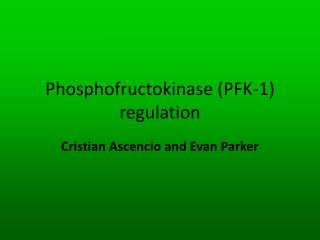 Phosphofructokinase (PFK-1) regulation