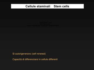 Si autorigenerano (self renewal) Capacità di differenziarsi in cellule differenti