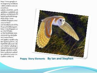 Poppy Story Elements By Ian and Stephen