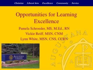 Opportunities for Learning Excellence