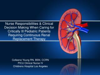 Colleene Young RN, BSN, CCRN PICU Clinical Nurse IV Childrens Hospital Los Angeles