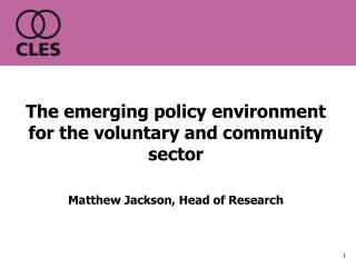 The emerging policy environment for the voluntary and community  sector