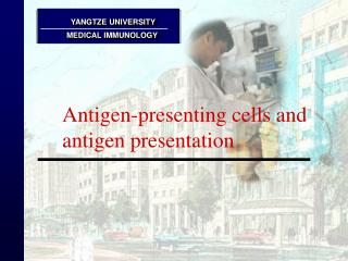 Antigen-presenting cells and antigen presentation