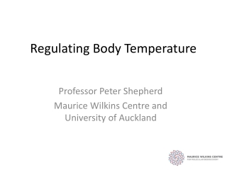 Temperature Regulation in Cold Environments