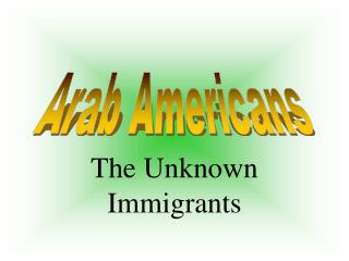 The Unknown Immigrants
