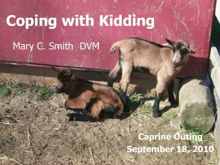 Coping with Kidding
