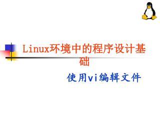 Linux 环境中的程序设计基础