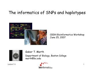 The informatics of SNPs and haplotypes