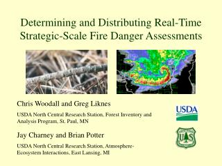 Determining and Distributing Real-Time Strategic-Scale Fire Danger Assessments