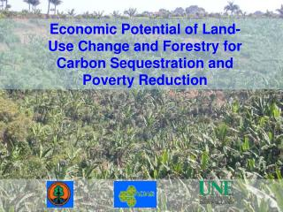 Economic Potential of Land-Use Change and Forestry for Carbon Sequestration and Poverty Reduction
