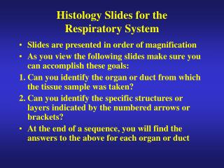 Histology Slides for the   Respiratory System
