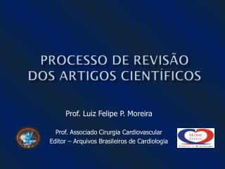 PROCESSO DE REVISÃO DOS ARTIGOS CIENTÍFICOS