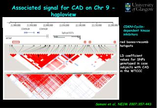 Associated signal for CAD on Chr 9 - haploview