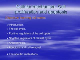 Cellular mechanism: Cell proliferation and apoptosis
