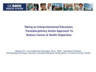Taking an Interprofessional Education,  Transdisciplinary Action Approach To