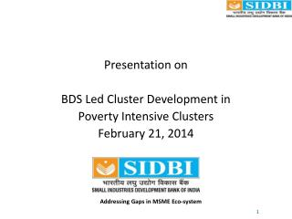 Presentation on BDS Led Cluster Development in Poverty Intensive Clusters February 21, 2014