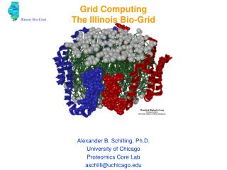 Grid Computing The Illinois Bio-Grid