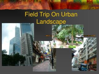 Field Trip On Urban Landscape