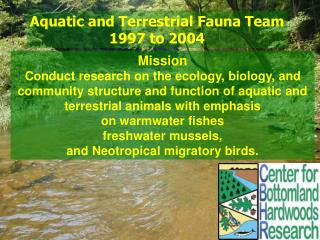 Aquatic and Terrestrial Fauna Team 1997 to 2004