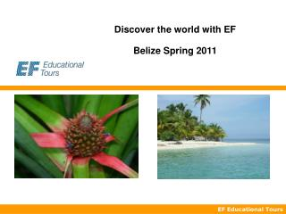 Discover the world with EF Belize Spring 2011