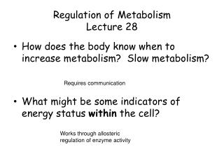 Regulation of Metabolism Lecture 28