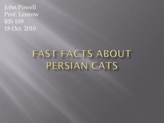 Fast Facts About Persian Cats