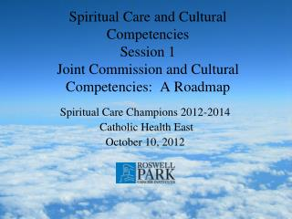 Spiritual Care Champions 2012-2014  Catholic Health East October 10, 2012