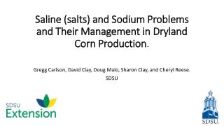 Saline (salts) and Sodium Problems and  Their  Management in  Dryland  Corn Production .