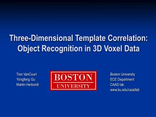 Three-Dimensional Template Correlation: Object Recognition in 3D Voxel Data