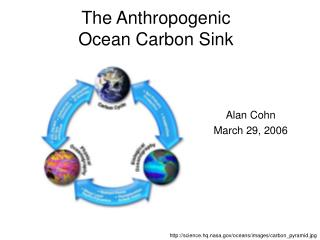 The Anthropogenic Ocean Carbon Sink