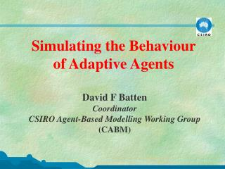 Simulating the Behaviour of Adaptive Agents