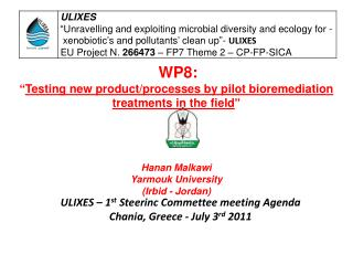 ULIXES – 1 st  Steerinc Commettee meeting Agenda Chania, Greece - July 3 rd  2011