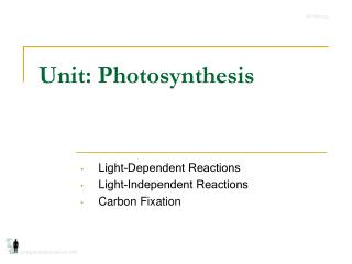 Unit: Photosynthesis