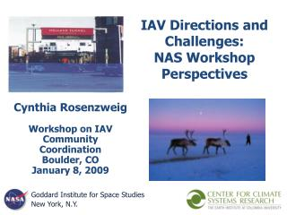 IAV Directions and Challenges:  NAS Workshop Perspectives