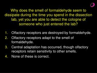 Olfactory receptors are destroyed by formaldehyde.