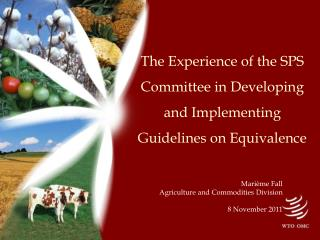 The Experience of the SPS Committee in Developing  and Implementing  Guidelines on Equivalence