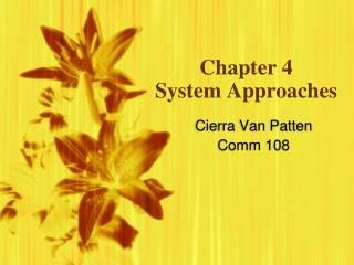 Chapter 4 System Approaches