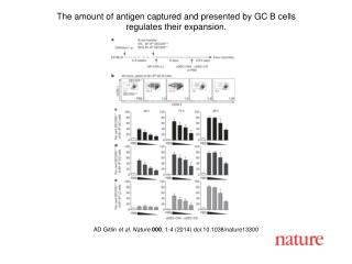 AD Gitlin  et al. Nature  000 , 1-4 (2014) doi:10.1038/nature13300