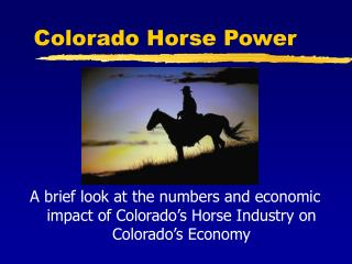 Colorado Horse Power