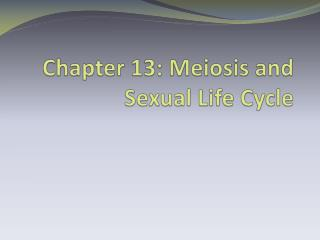 Chapter 13: Meiosis and Sexual Life Cycle