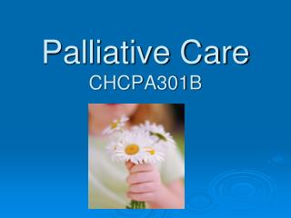 Palliative Care CHCPA301B
